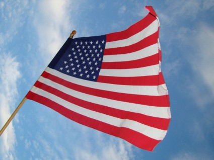 Happy Independence Day! Be Free From Heartburn with Acupuncture!