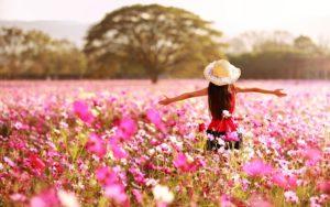 girl in poppy field